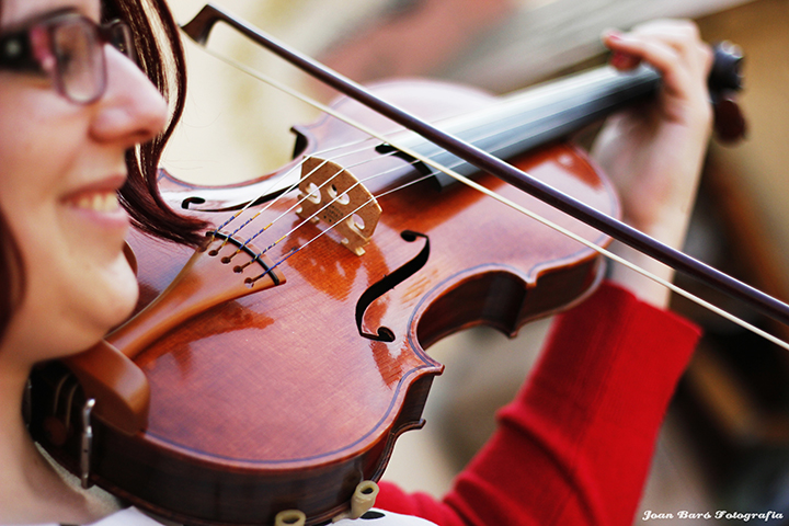 handmade bluegrass fiddles 5 string violins and classical guitars